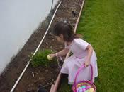 green easter egg hunt