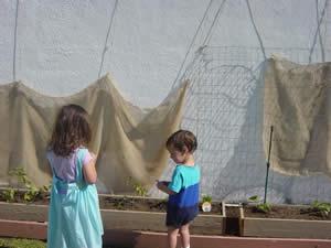 checking out the garden