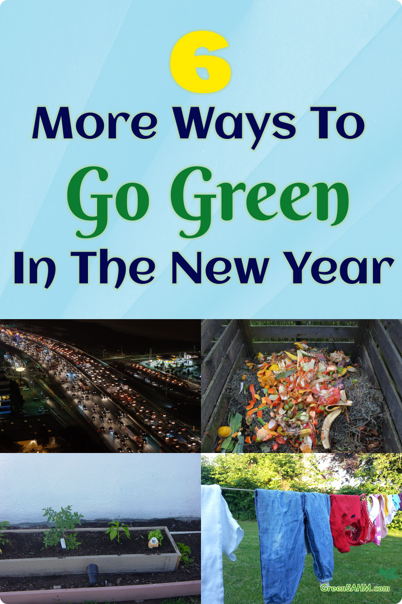 6 More Ways to Go Green in the New Year
