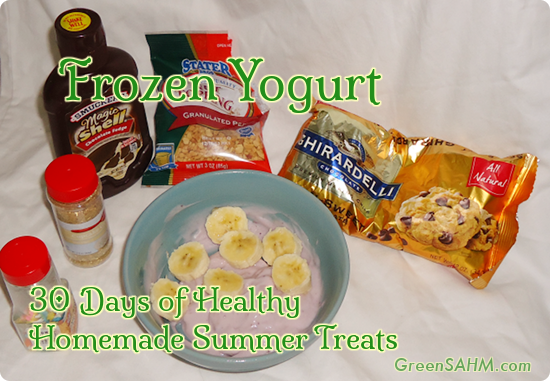 Frozen Yogurt - Day 18 of 30 Days of Healthy Homemade Summer Treats