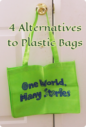 4 Alternatives to Plastic Bags