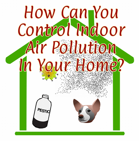 How Can You Control Indoor Air Pollution In Your Home?