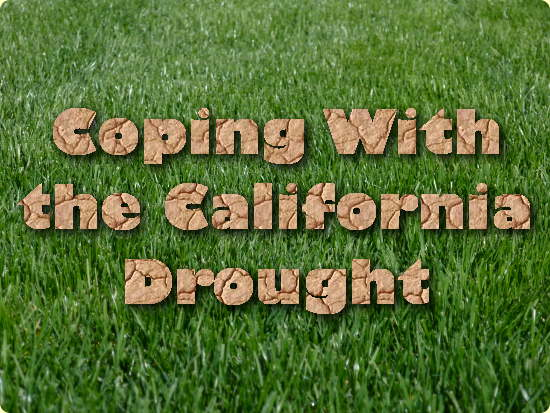 Coping With the California Drought