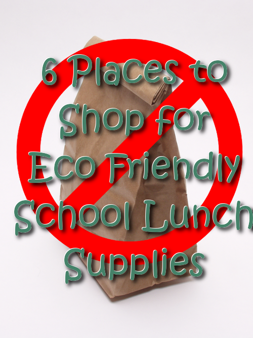 6 Places to Shop for Eco Friendly School Lunch Supplies
