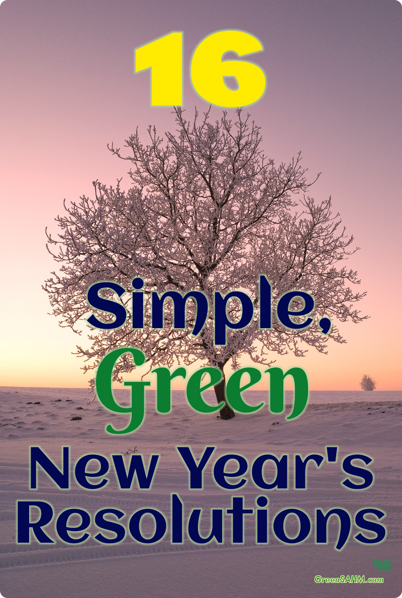 16 Simple, Green New Year's Resolutions